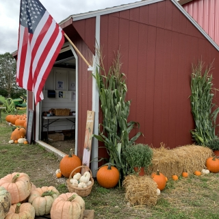 Adon Farms - The Red Shed