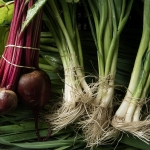 Beets and green onions. Kent Family Growers.