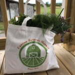 Canton Farmers' Market Bag
